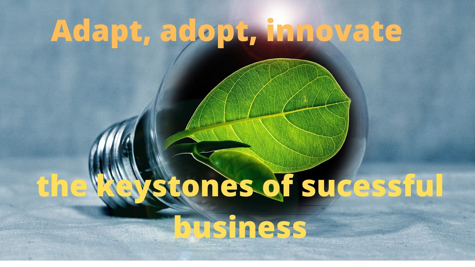 Adopt, adapt and innovate - the keystones of successful business